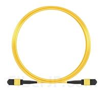10m MPOメス 12芯 タイプA OS2 9/125 シングルモード トランクケーブル(エリート、LSZH、黄色)の画像