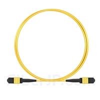 2m MPOメス 12芯 タイプB OS2 9/125 シングルモード トランクケーブル(エリート、LSZH、黄色)の画像